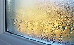 Mostki cieplne, wilgotne ściany i grzyb - skutki źle wykonanego ocieplenia ścian i dachu